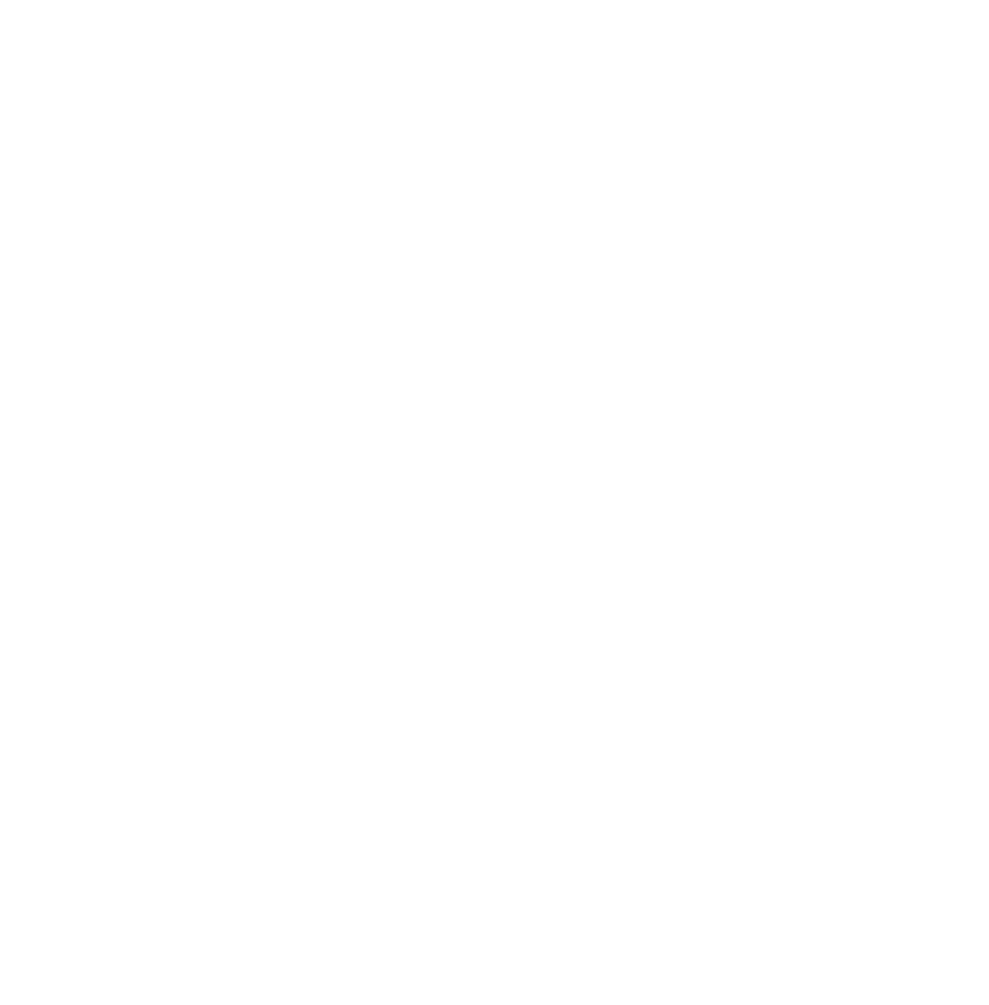 Evolve Digital Agency